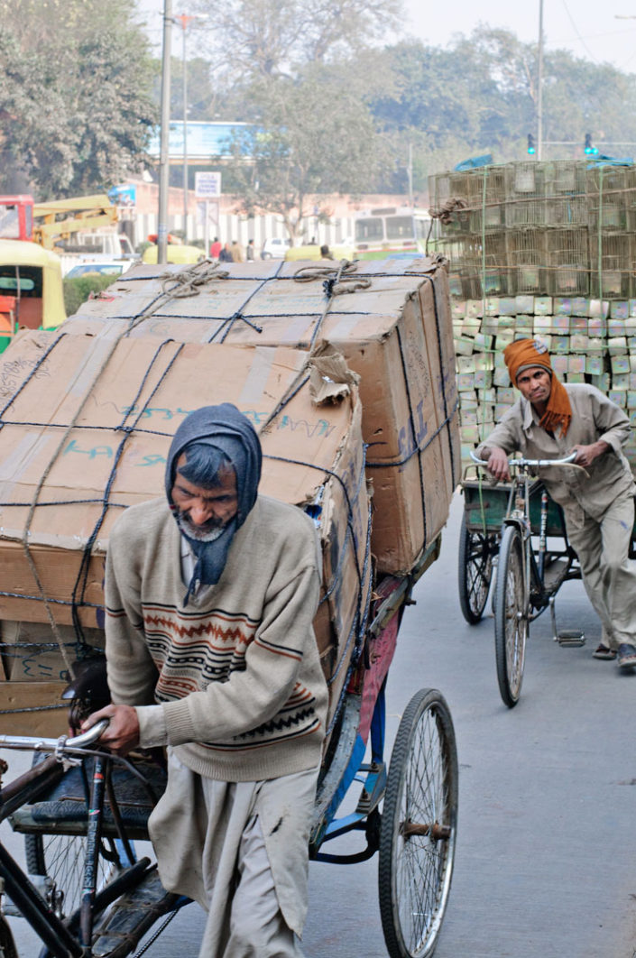 Two overloaded rickshaws are being pushed in North India.