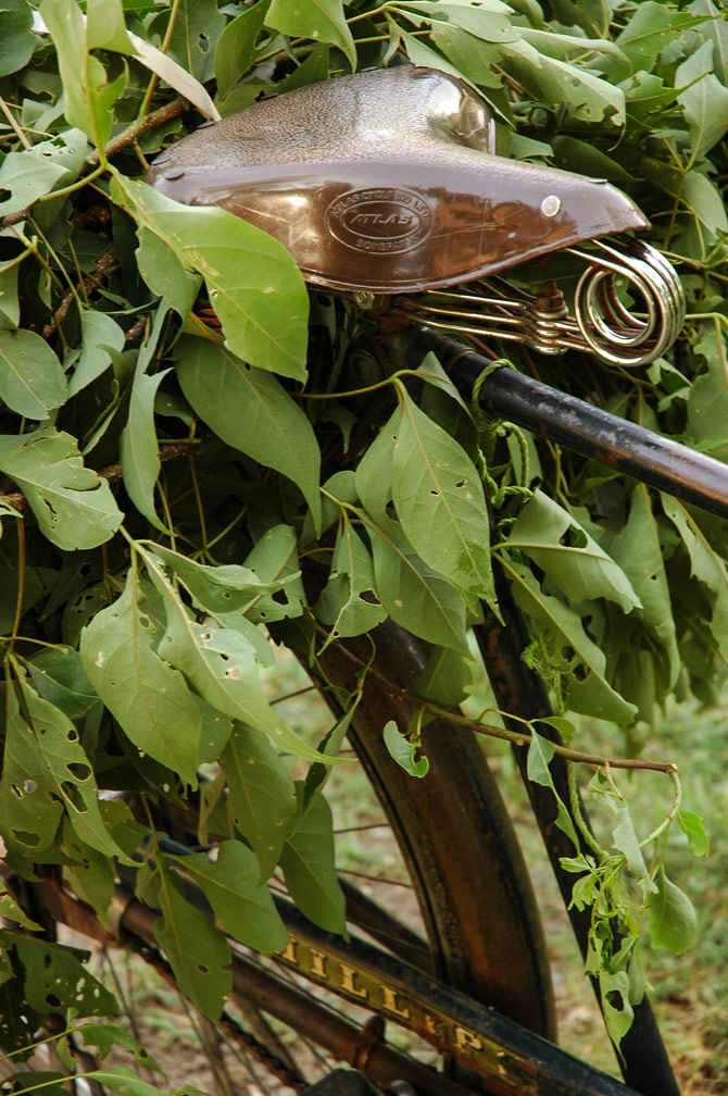 An Indian bicycle is loaded up with leaves