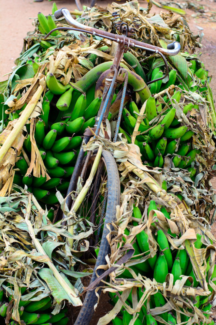A bike is completely loaded up with bananas in Africa