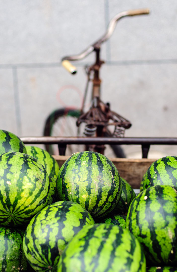 A cargo bike full of watermelons