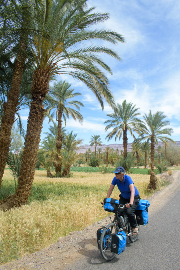 A touring cyclist pedals past palm trees in South Morocco